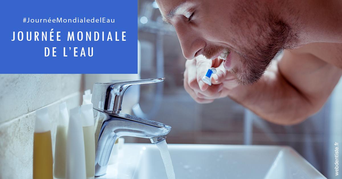 https://selarl-heraud.chirurgiens-dentistes.fr/Journée de l'eau 2