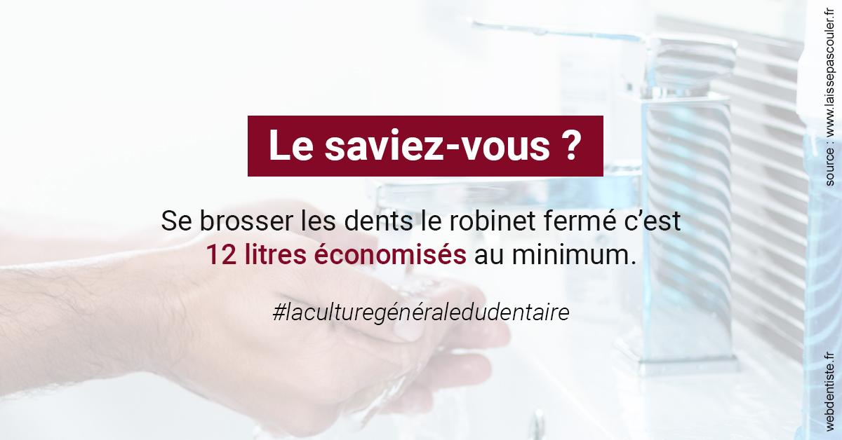 https://selarl-heraud.chirurgiens-dentistes.fr/Economies d'eau 2